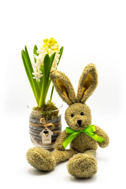 kaninchen mit blühenden hyazinthen - plüschhase stock-fotos und bilder