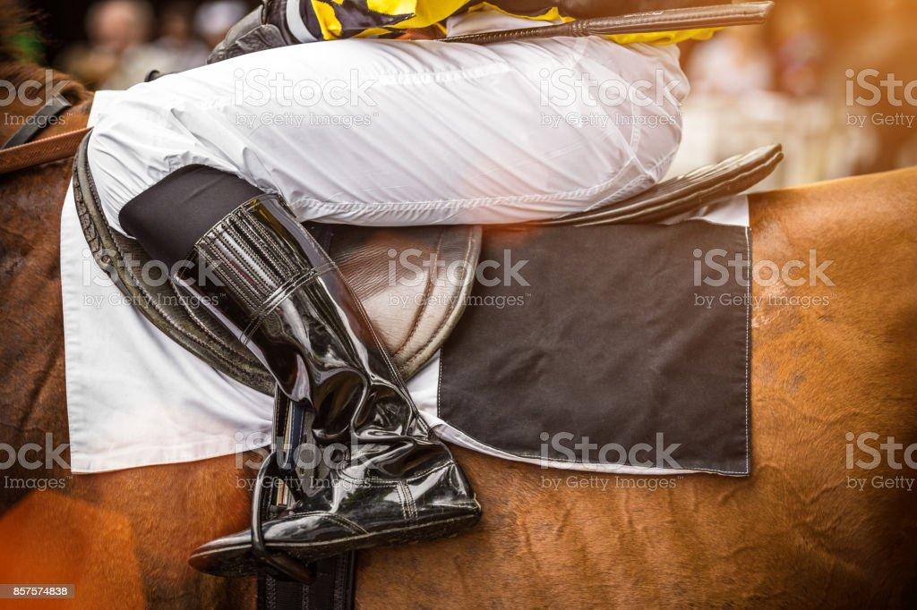 Race horse with jockey, close-up