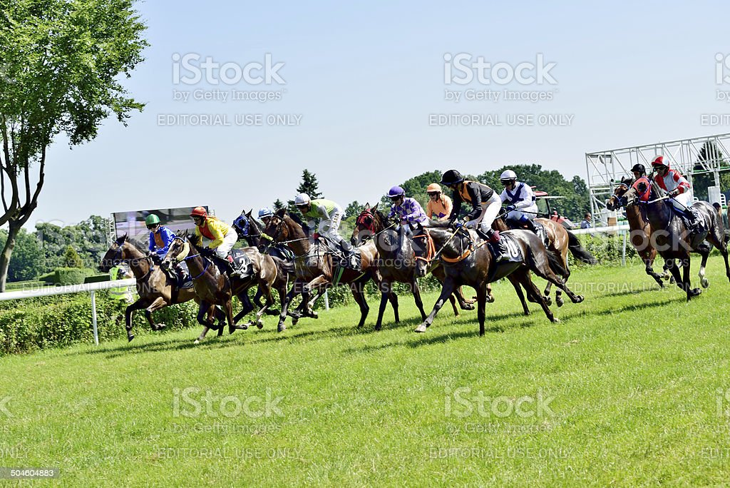 Race horses on the Partynice track. stock photo