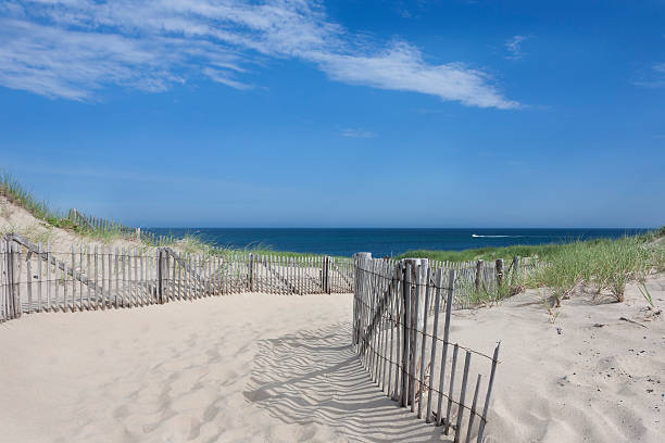 Race Point, Provincetown, MA Race Point beach, Provincetown, Massachusetts provincetown stock pictures, royalty-free photos & images