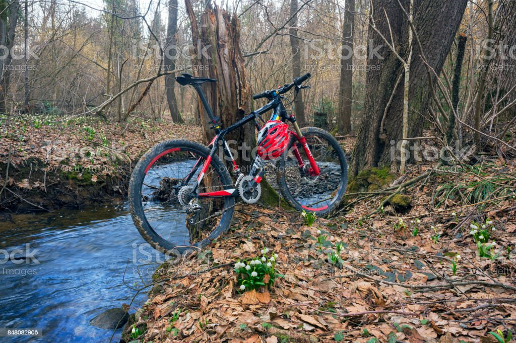 Racing carbon bike Ukraine and snowdrops stock photo