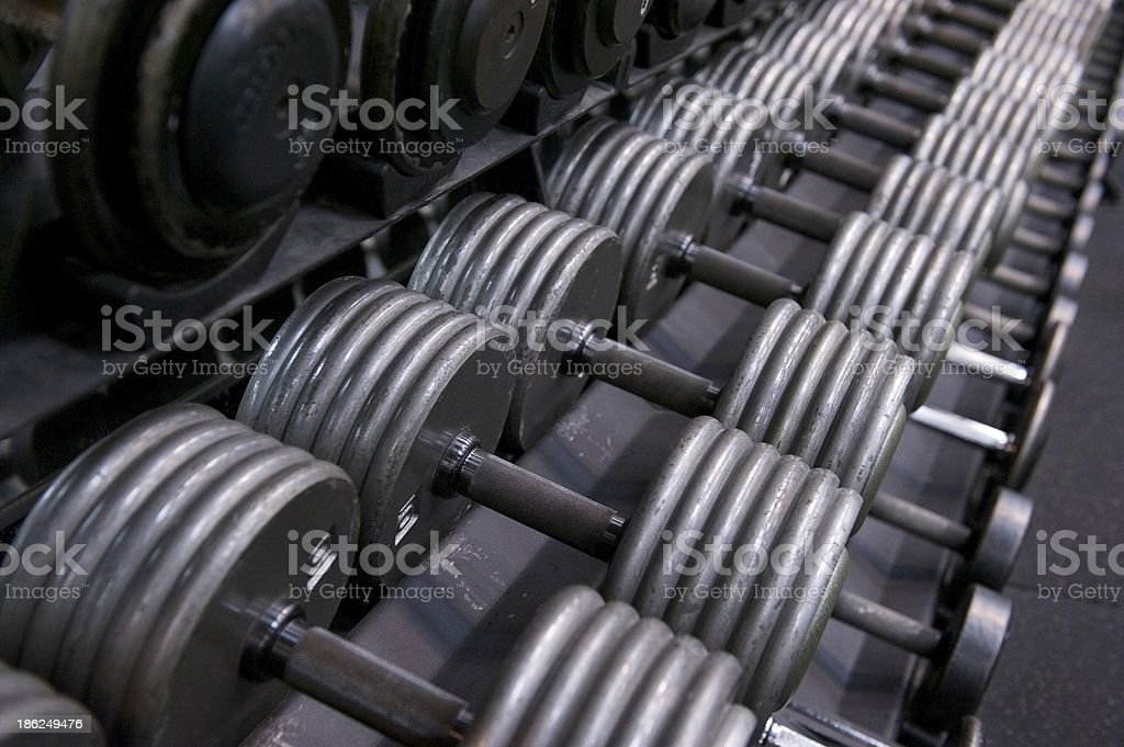 Rack of Dumbbells at a Professional Gym royalty-free stock photo
