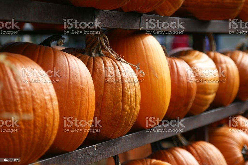 Rack of Pumpkins royalty-free stock photo