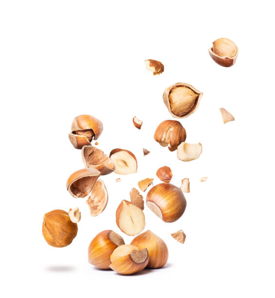ð¡racked hazelnuts fall down isolated on white background - nocciola foto e immagini stock