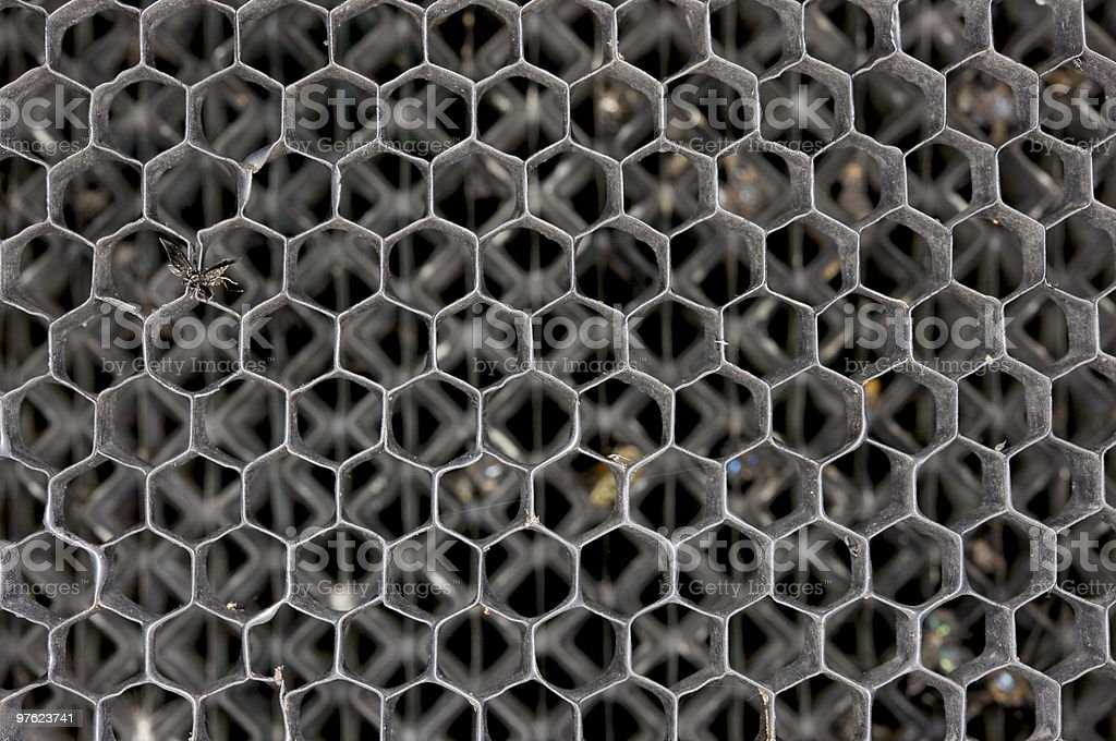 Radiator grille on vintage car full of flies royalty-free stock photo