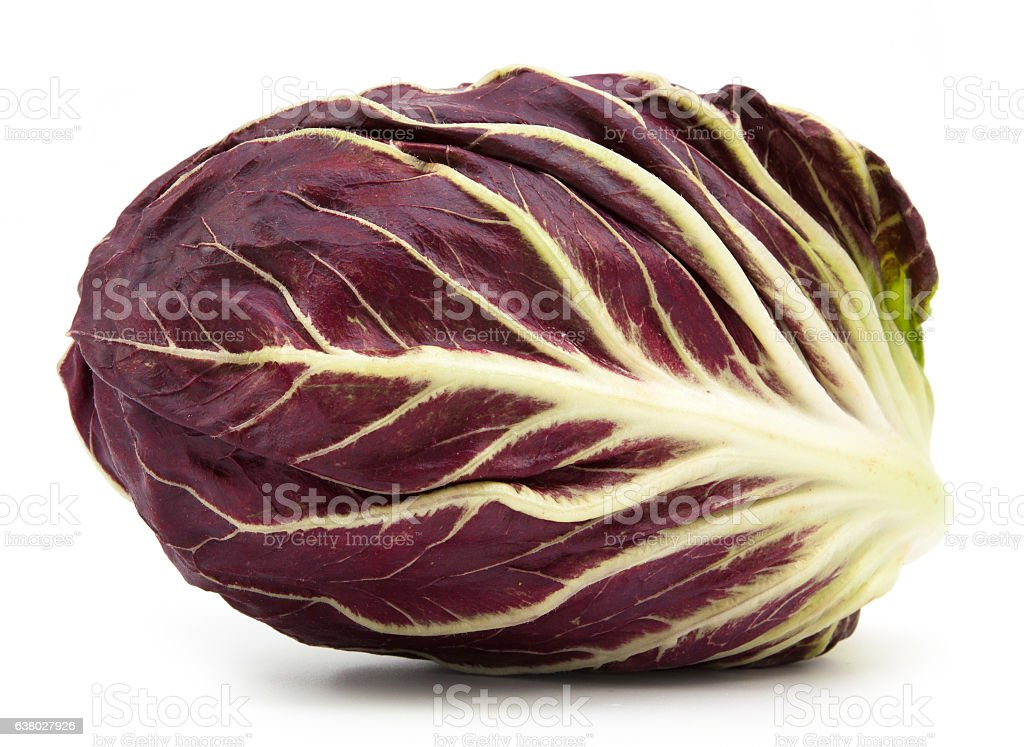 radicchio red salad isolated stock photo
