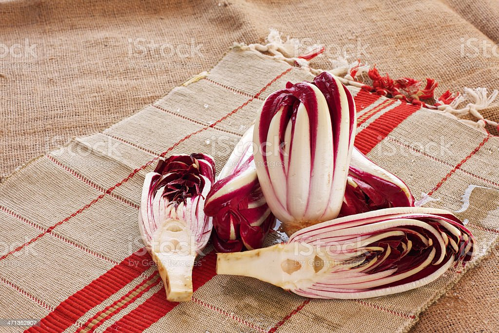 Radicchio rosso di Treviso (red chicory) royalty-free stock photo