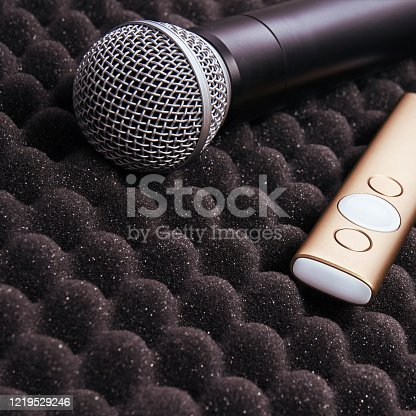 854811490 istock photo radio microphone Item stand on foam grey rubber 1219529246