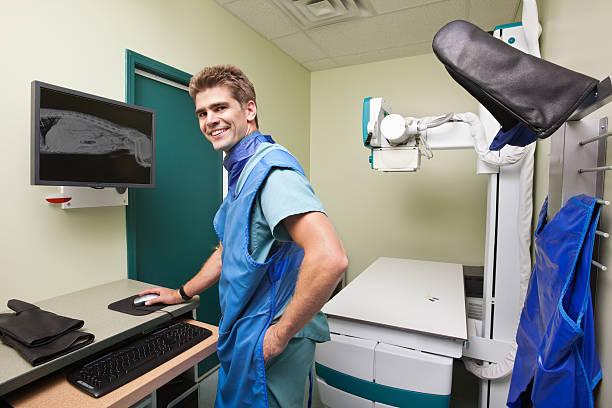 Radiologist examining  X-ray of dog's spine stock photo