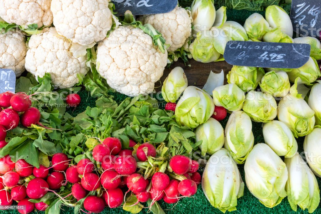 Radish, cauliflower and chicory royalty-free stock photo