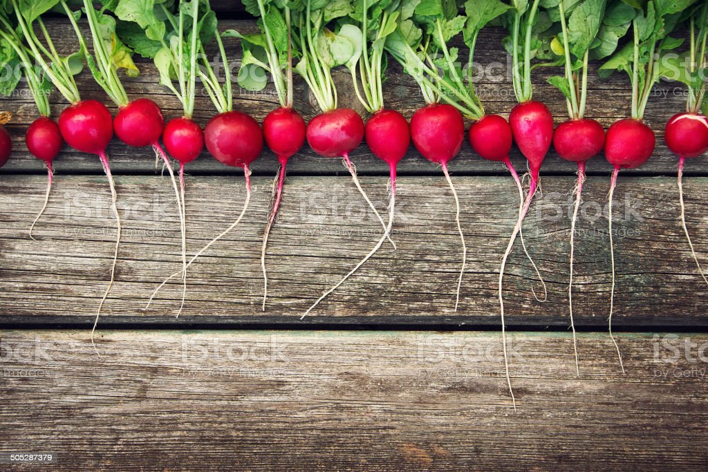 Radish on wooden background stock photo