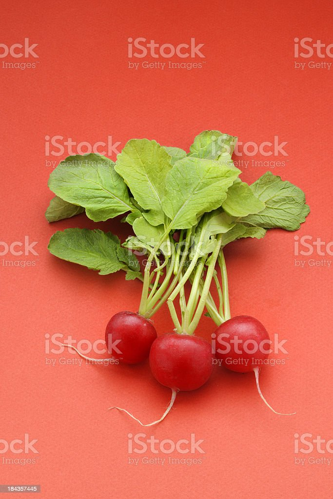 radish, XXXL image stock photo
