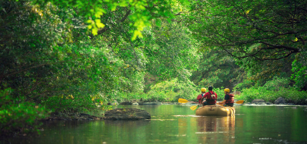 a moment of calm in the river during a rafting adventure in costa rica.