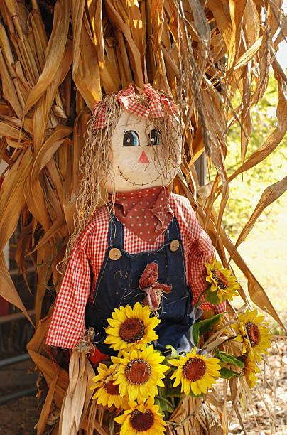 Raggedy Ann scarecrow stok fotoğrafı