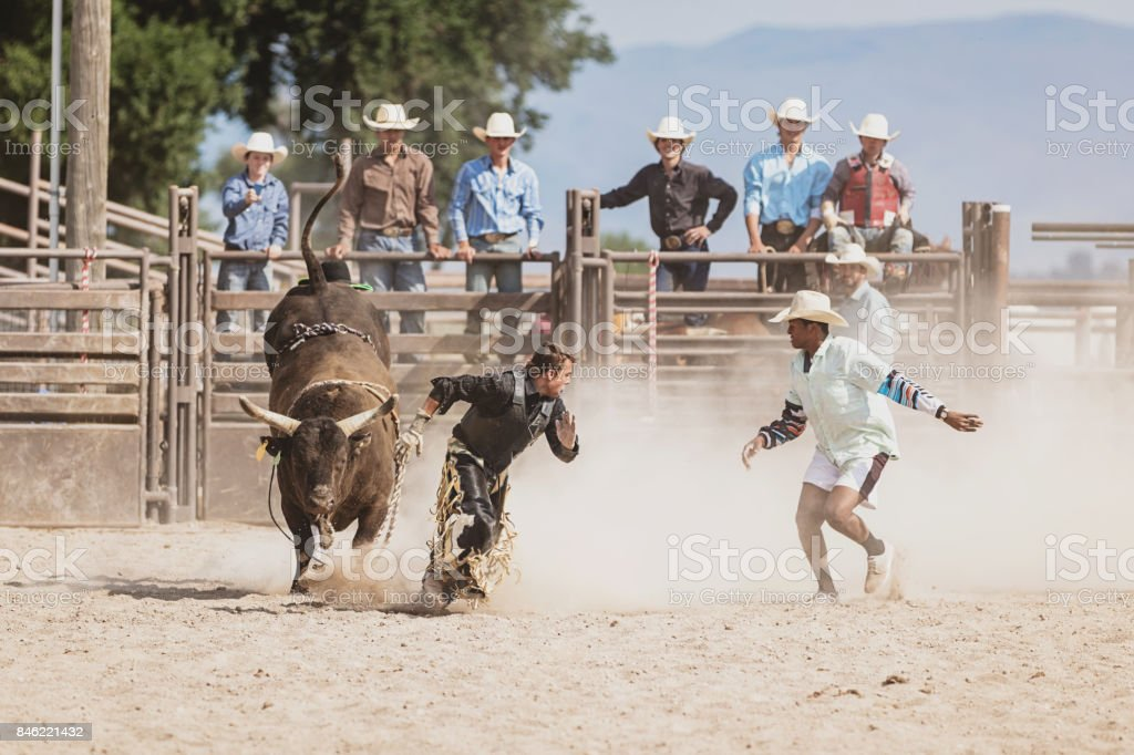 Raging Bull chasing Bull Rider Cowboy in Rodeo Arena stock photo