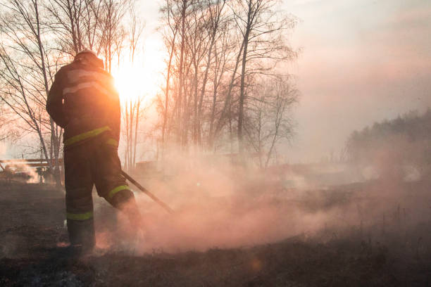 raging forest spring branden. het branden van droog gras, reed langs het meer. gras brandt in weide. ecologische ramp. vuur en rook vernietigen alle leven. brandweerlieden blussen grote brand. lot van smok - bosbrand stockfoto's en -beelden
