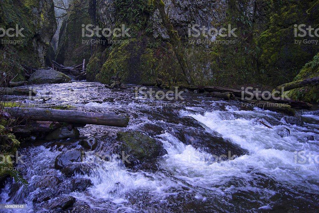 Raging Oneonta Creek stock photo