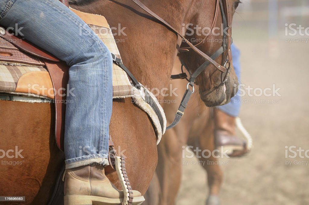Raiding an horse stock photo