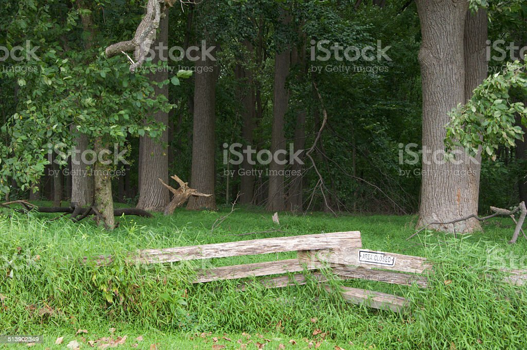 Rail Fence in Forest stock photo
