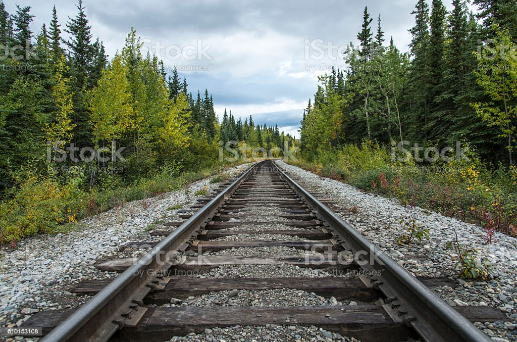 Rail road in a forest stock photo