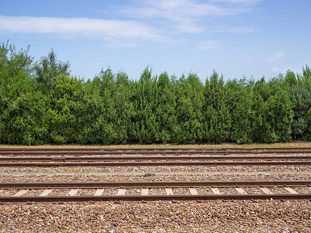 railroad side view - 火車軌 個照片及圖片檔