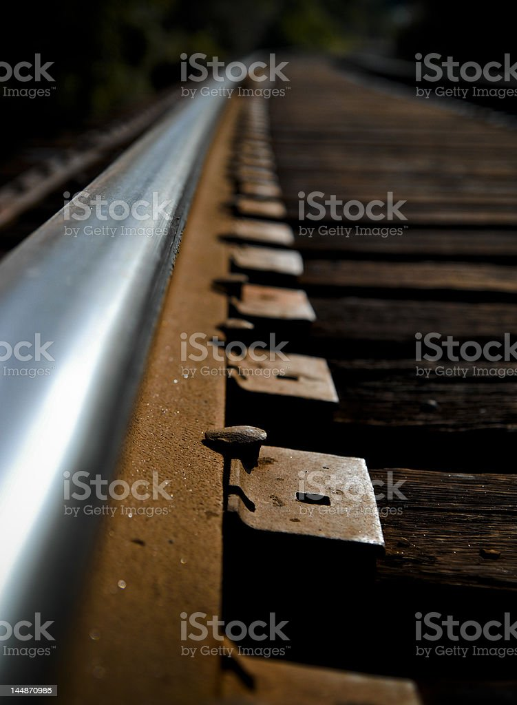 Railroad Spike royalty-free stock photo