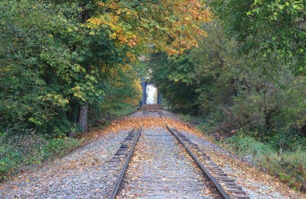 railroad track and iron bridge into the forest woods, washington-usa - snoqualmie foto e immagini stock