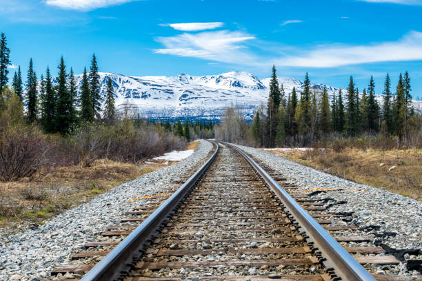 Railroad track and mountain range Part of Alaska railroad in the forest of Denali National Park with a mountain range in background. rocky mountains north america stock pictures, royalty-free photos & images
