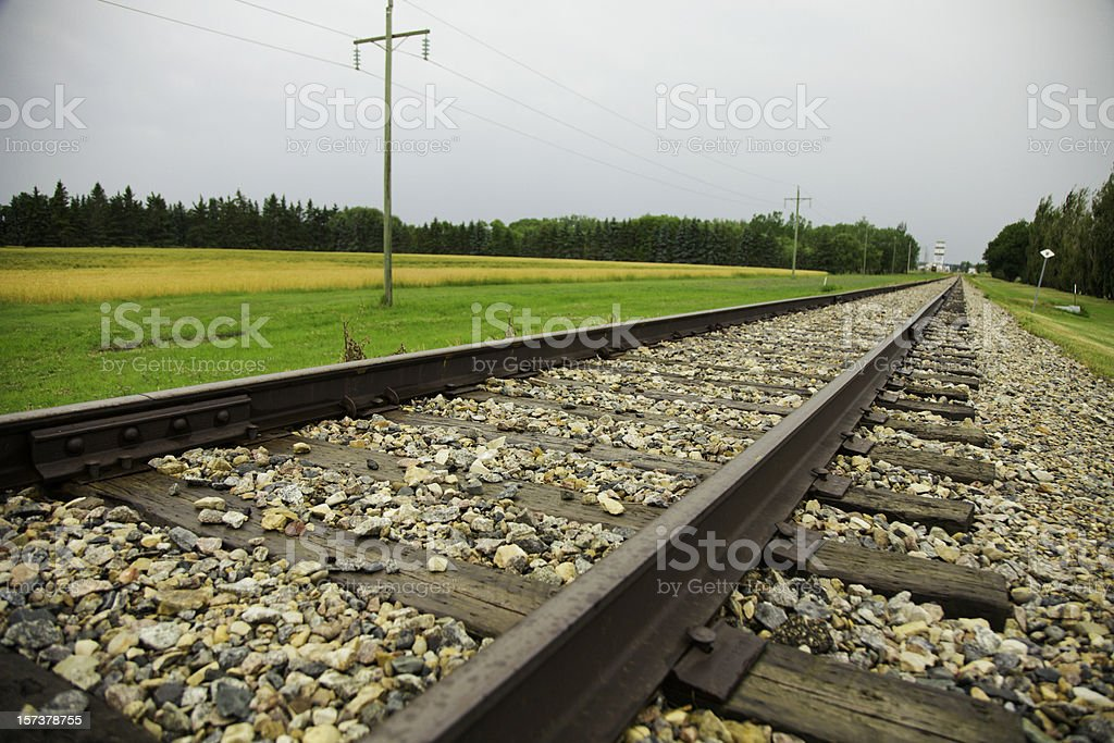Railroad Track Perspective royalty-free stock photo