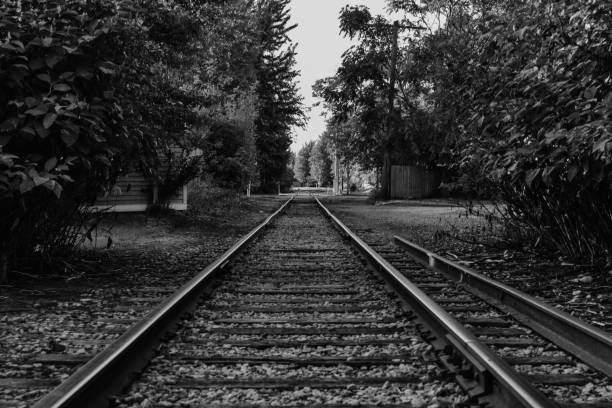 Railroad tracks converging in the distance stock photo