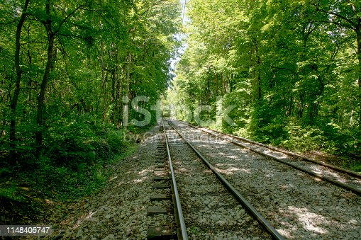 Railroad tracks on a bed of rock stretching out across forest landscape. Forest background with sun lighting.