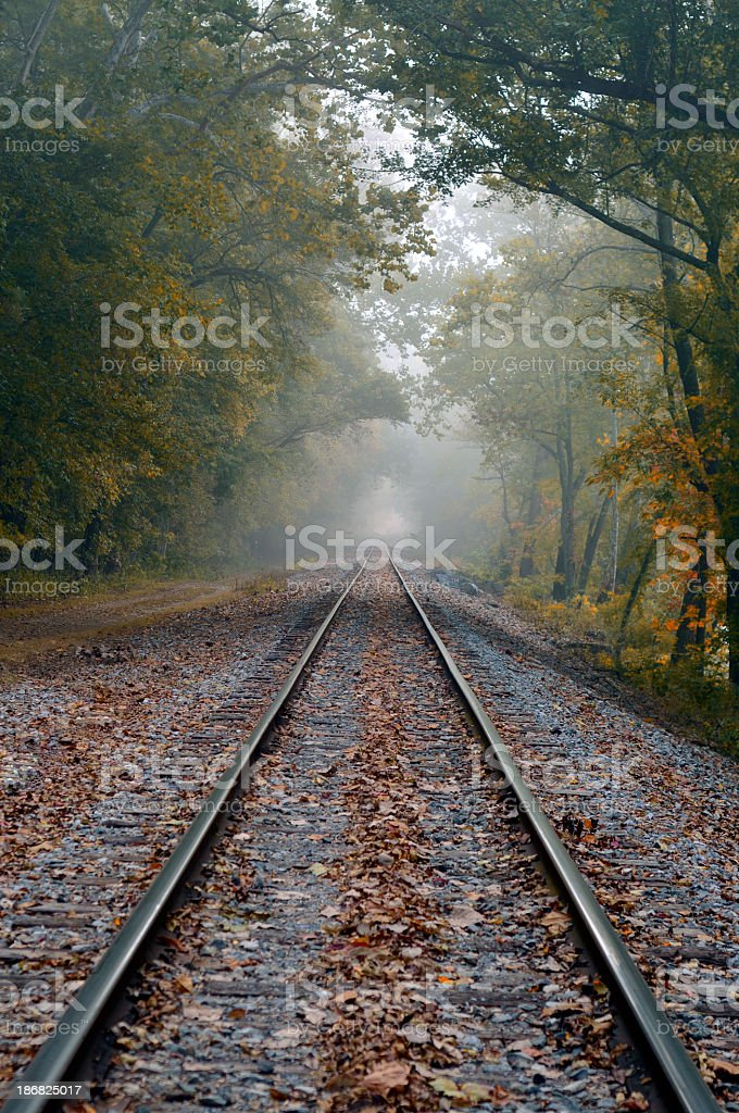 Railroad Tracks Into Morning Mist stock photo