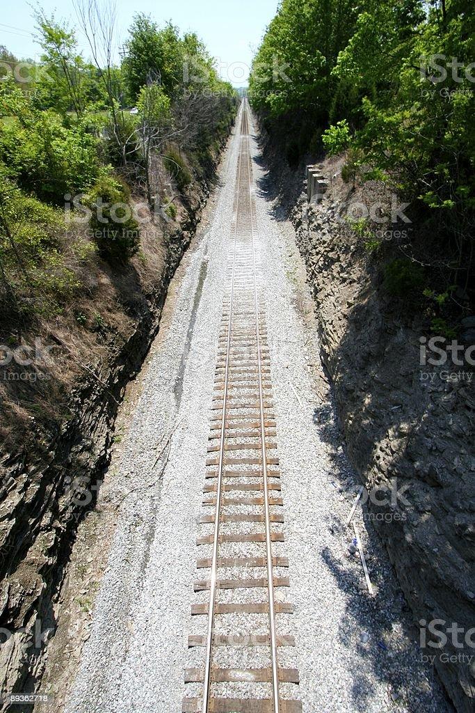 Railroad Tracks - Vertical royalty free stockfoto