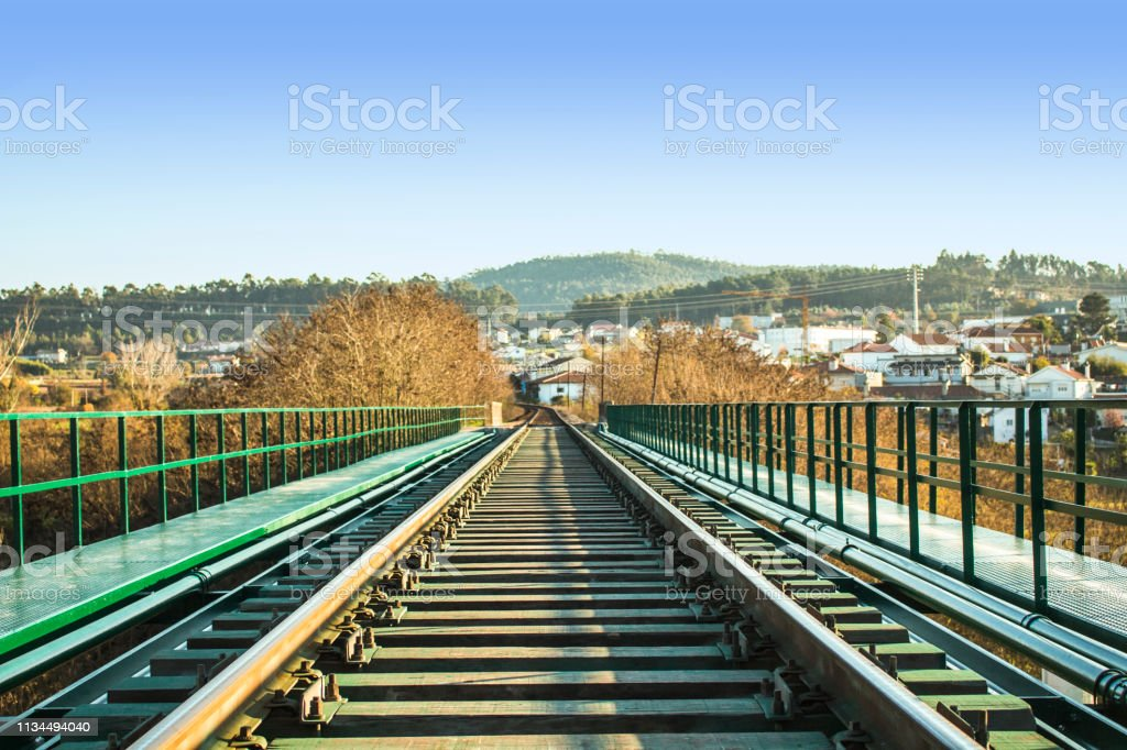 Railway or railroad tracks with vanishing point in the center. Trees...