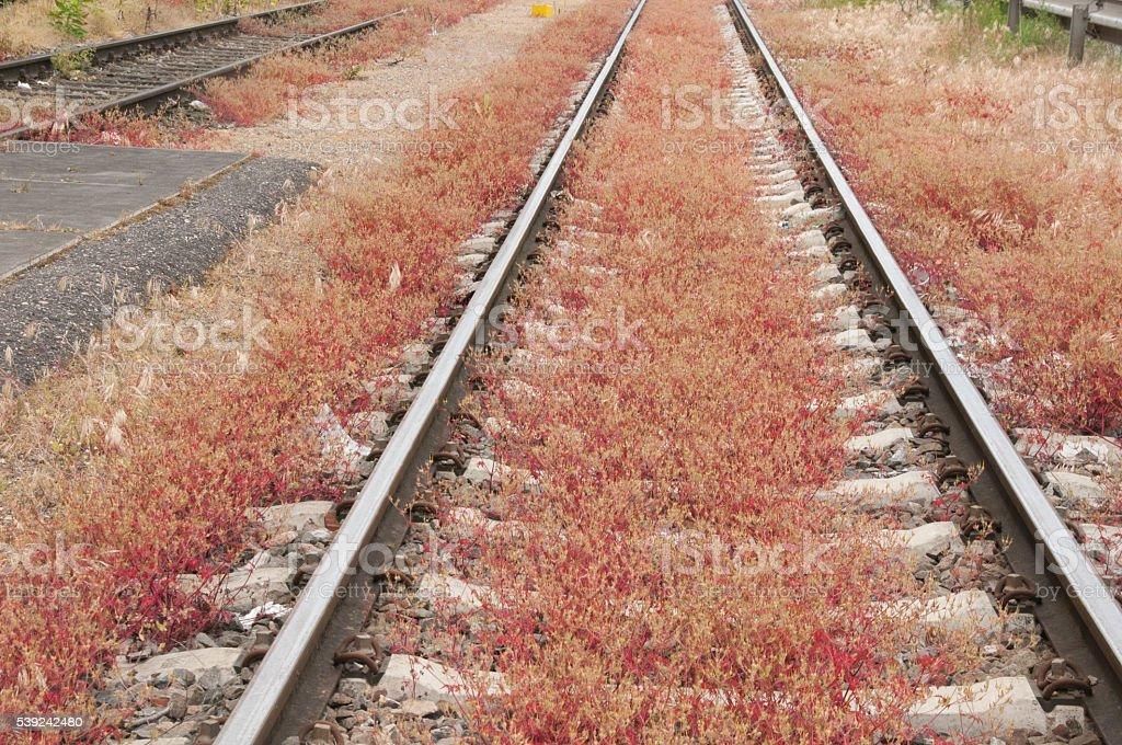 Rails indefinitely royalty-free stock photo