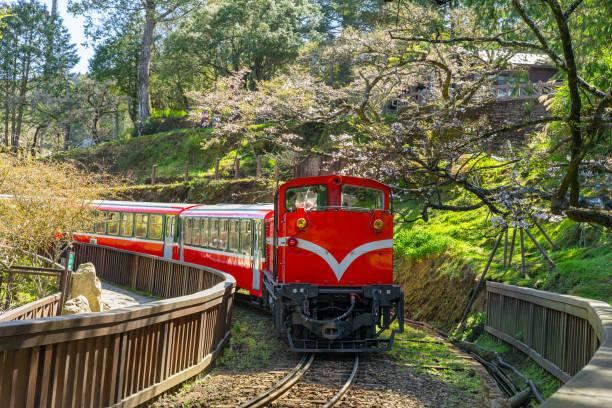eisenbahn in alishan forest recreation area, taiwan - insel taiwan stock-fotos und bilder