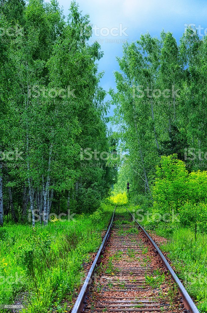 Railway in the forest stock photo