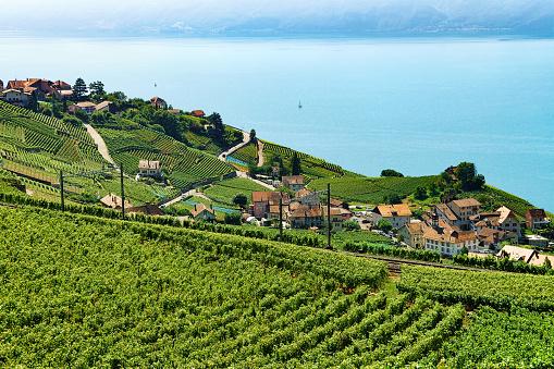 Railway line Lavaux Vineyard Terraces Lake Geneva Switzerland