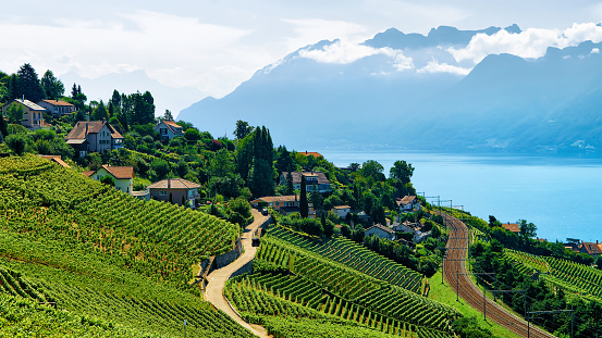 Railway line near Lavaux Vineyard Terrace Lake Geneva Swiss