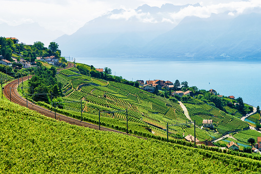Railway line near Lavaux Vineyard Terrace Lake Geneva Switzerland