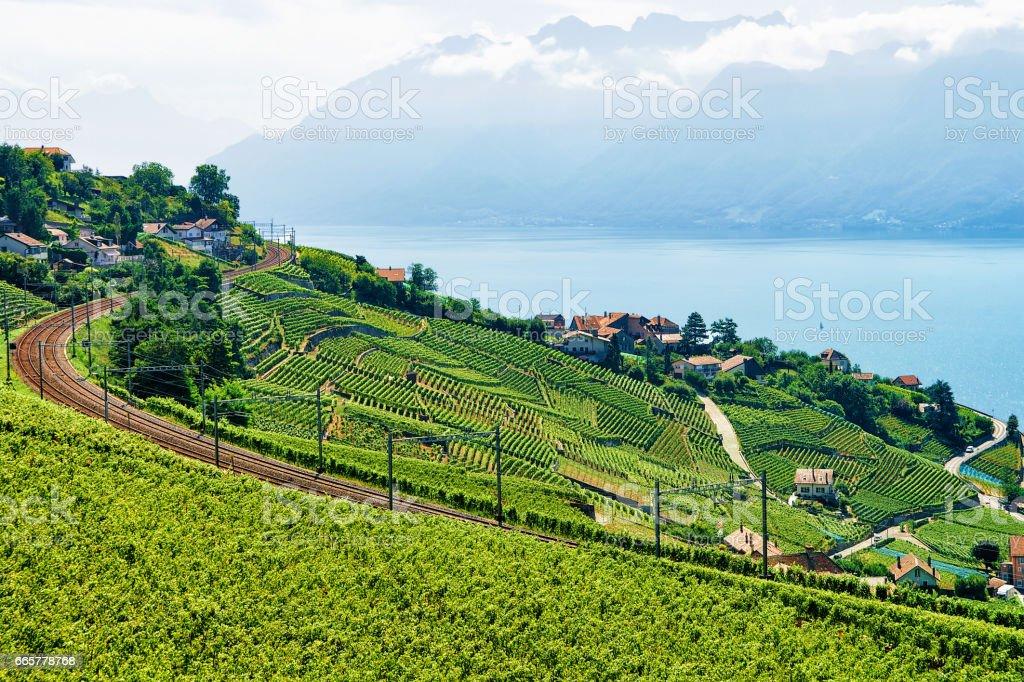 Railway line near Lavaux Vineyard Terrace Lake Geneva Switzerland stock photo