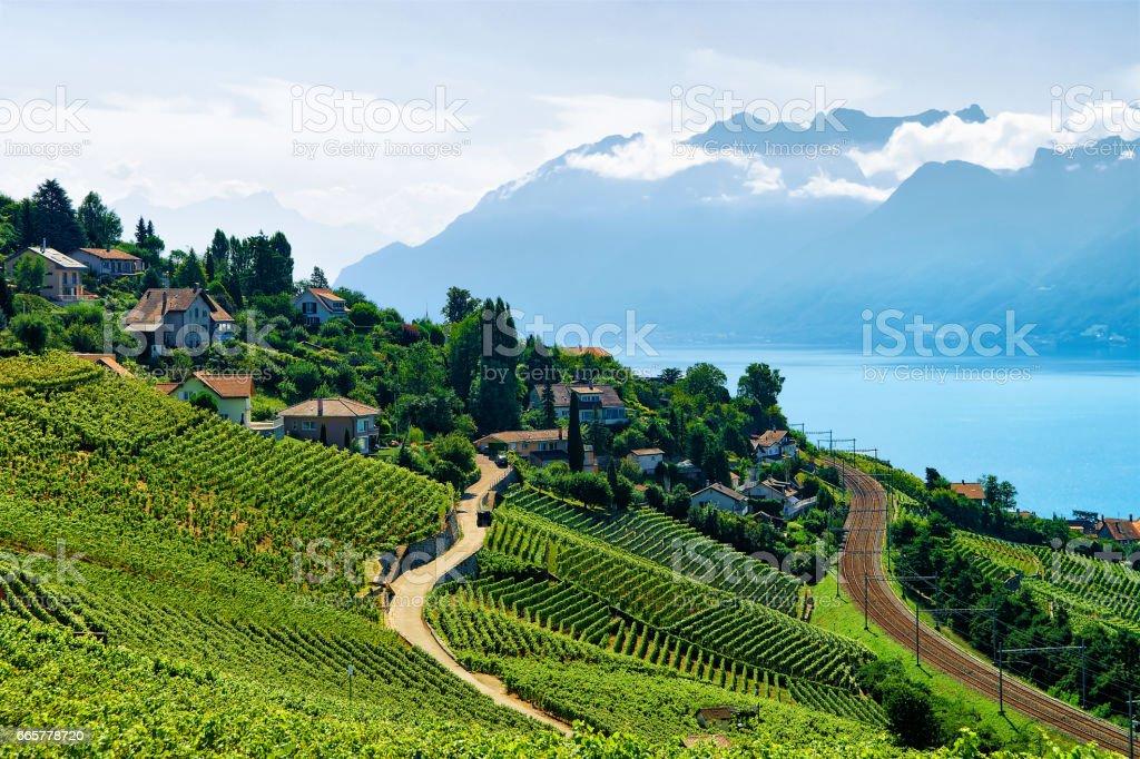 Railway line on Lavaux Vineyard Terrace Lake Geneva Swiss stock photo