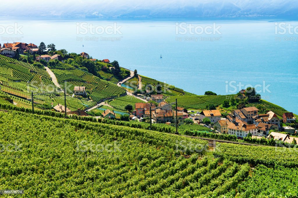 Railway line on Lavaux Vineyard Terrace Lake Geneva Switzerland stock photo