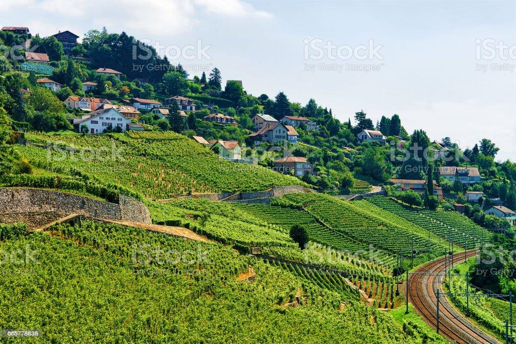 Railway line on Lavaux Vineyard Terraces Switzerland stock photo