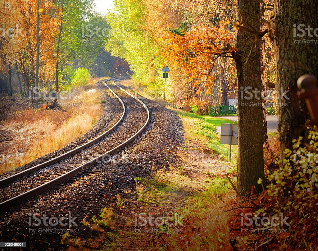 Railway through fall woods stock photo