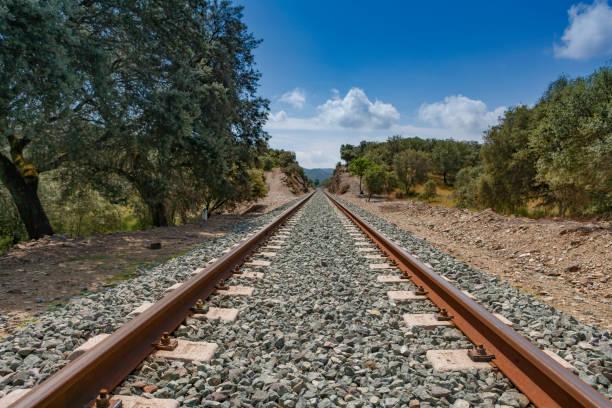 Railway through forest stock photo
