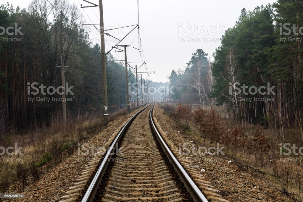 Railway track in the forest. The road leading deep into the forest. royalty-free stock photo