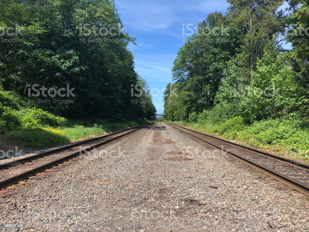 Railway tracks to who know where royalty-free stock photo