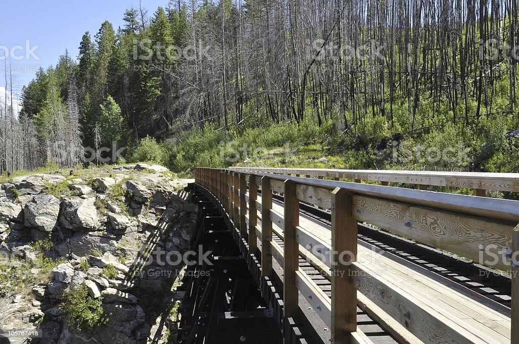 Railway Trestle royalty-free stock photo
