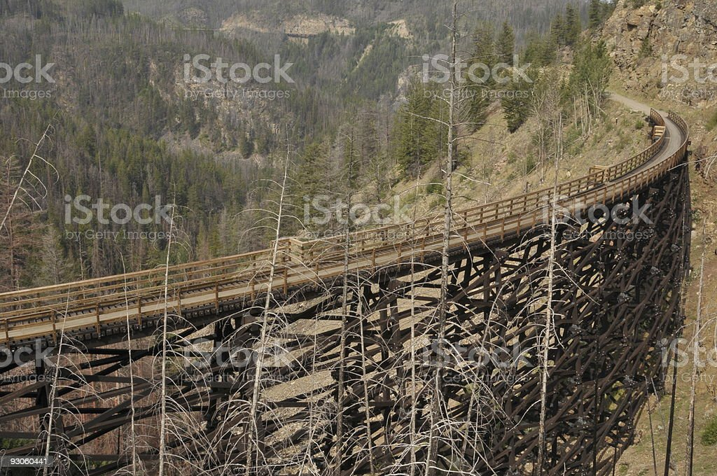 Railway Trestle royalty-free stock photo